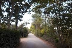 Verso il Montenetto
